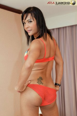 Inde brunette escorts Grants, NM